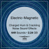 Electric Magnetic Icon 300x